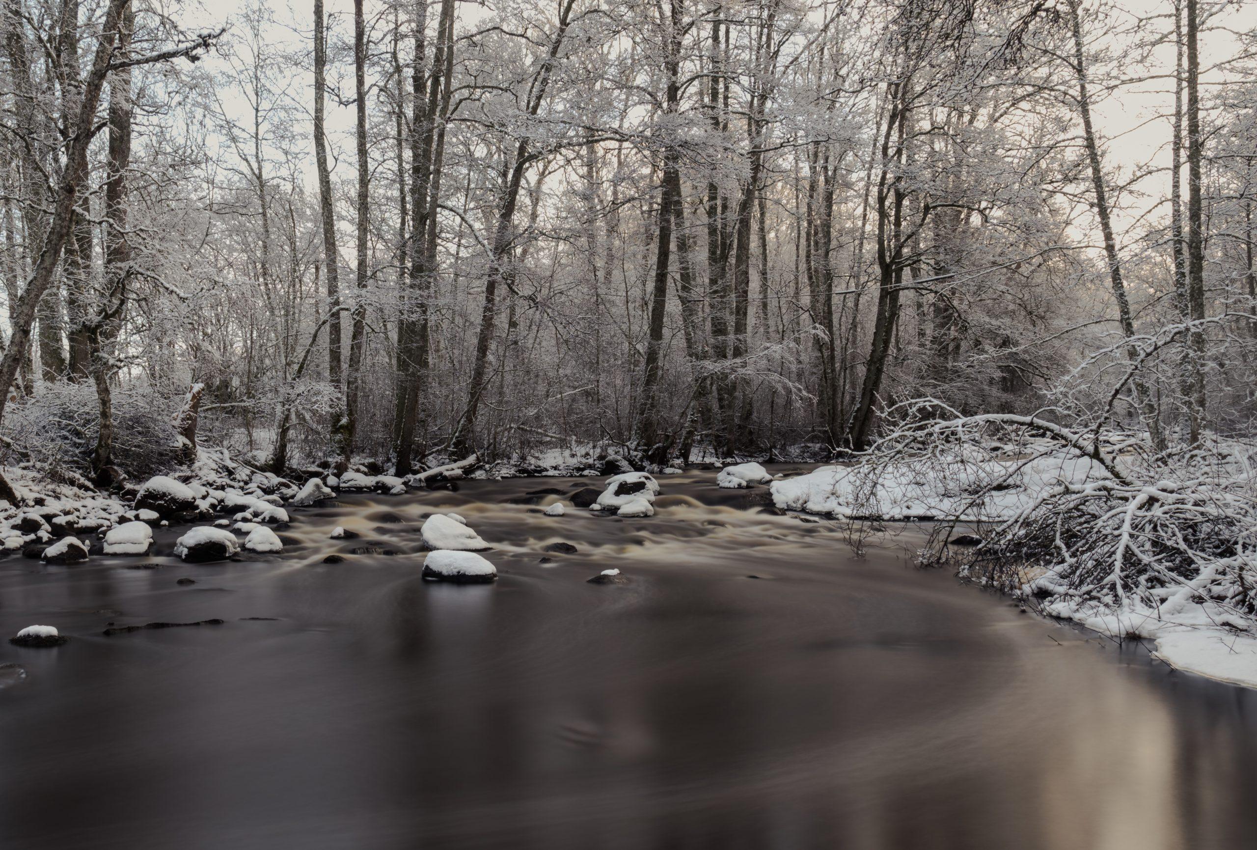 Miljömedveten fotografering